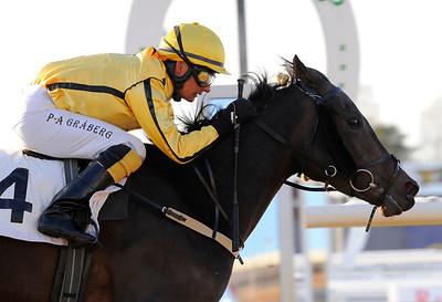 Zingoalla Zaid vinner med Per-Anders Gråberg   Täby 120129    Foto: Stefan Olsson / Svensk Galopp