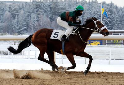 Weald vinner med Oliver Wilson | Täby 120205 |  Foto: Stefan Olsson / Svensk Galopp