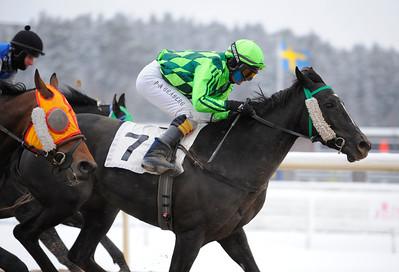 Olivminot och Per-Anders Gråberg vinner före Novasun och Huntley | Täby 120205 |  Foto: Stefan Olsson / Svensk Galopp