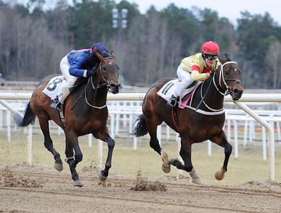 Battle Royal och Fanny Olsson vinner före Time For Fun | Täby 120401 |  Foto: Stefan Olsson / Svensk Galopp