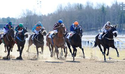 Constable Country (mitten) vinner före Chiloé (t h) | Täby 120408 |  Foto: Stefan Olsson / Svensk Galopp