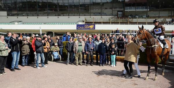 Cheerful Giver i vinnarcirkeln tillsammans med delägarna i stall Hyperion |  Foto: Stefan Olsson / Svensk Galopp