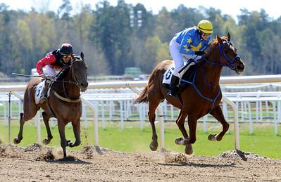 Merrion Tiger och Anna Klaesson vinner före Berserk | Täby 120502 |  Foto: Stefan Olsson / Svensk Galopp