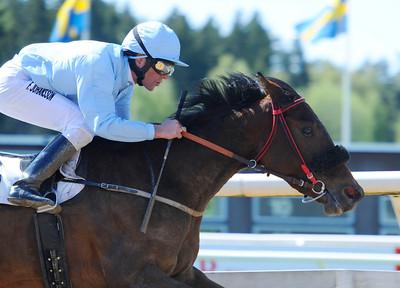Geordie Iris vinner för Fredrik Johansson | Täby 120513 |  Foto: Stefan Olsson / Svensk Galopp
