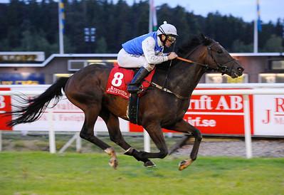 Sir Lando vinner med Fredrik Johansson | JR FÖRVALTNING STOCKHOLMS STORA PRIS (GR 3) | Täby 120605 |  Foto: Stefan Olsson / Svensk Galopp