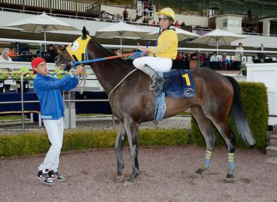 Frontier Star i vinnarcirkeln | Täby 120610 |  Foto: Stefan Olsson / Svensk Galopp
