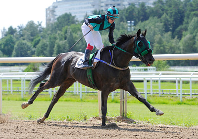 Equito Hill vinner med Shane Karlsson | Täby 120701 |  Foto: Stefan Olsson / Svensk Galopp