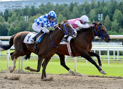 Sarejano och Manuel Martinez vinner före Al Dahis. | STOCKHOLM ARABIAN CUP (GR 3) | Täby 120909 |  Foto: Stefan Olsson / Svensk Galopp