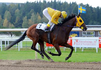 El Gran Mago vinner med Leonard Rios | Täby 121003 |  Foto: Stefan Olsson / Svensk Galopp
