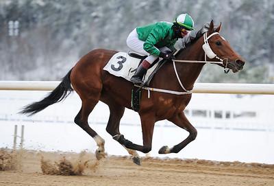 Spirit of Life vinner med Dina Danekilde   Täby 121212   Foto: Stefan Olsson / Svensk Galopp