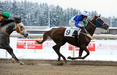Samshayah vinner med Max W Friberg | Täby 121219 |  Foto: Stefan Olsson / Svensk Galopp