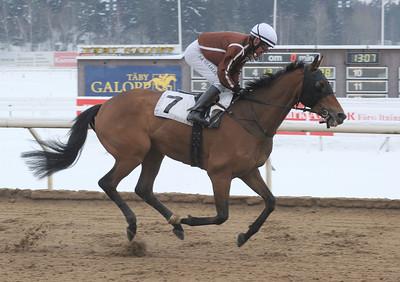 Flow vinner med Per-Anders Gråberg   Täby 130127   Foto: Stefan Uppström