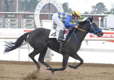 Mr Limpopo vinner med Annelie Hollstenius | Täby 130217 | Foto: Stefan Uppström