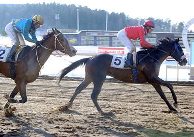Last Pay vinner med Espen Ski | Täby 130224 | Foto: Stefan Uppström