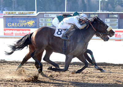 Lataradud och Elione Chaves vinner före Mutaaleq | Täby 130224 | Foto: Stefan Uppström