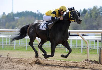 Always De Man vinner med Rafael Schistl | Täby 130508 |  Foto: Stefan Olsson / Svensk Galopp