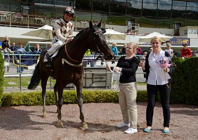 Greenday och Per-Anders Gråberg tillsammans med tränare Caroline Malmborg och skötare Madeleine Boström   Täby 130814    Foto: Stefan Olsson / Svensk Galopp