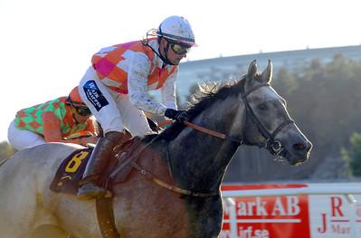 Eye In The Sky och Per-Anders Gråberg vinner med Duke Derby | MR ASCOT VINTERFAVORITERNAS PRIS | Täby 131013 |  Foto: Stefan Olsson / Svensk Galopp