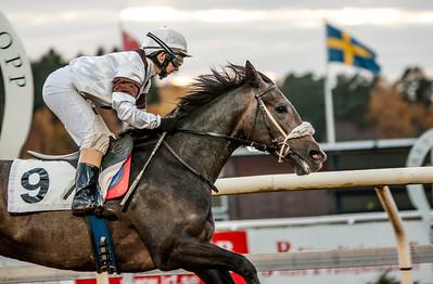 Red Dakota vinner med  Rebecca Colldin.   Täby 131027   Foto: Elina Björklund / Svensk Galopp