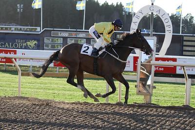 Eagle Eye Star vinner med Per-Anders Gråberg | Täby 131113 | Foto: Bo Bäckman / Svensk Galopp