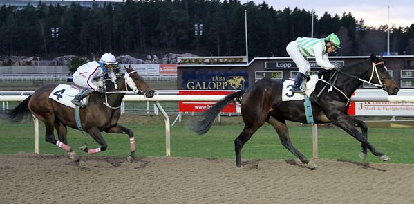 Pepper vinner under Carlos Lopez   Täby 131222   Foto: Klara Röstlund / Svensk Galopp