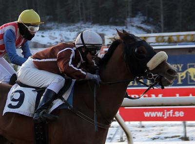 Tigherella vinner med Elin Borén. | Täby 140126 | Foto: Klara Röstlund / Svensk Galopp