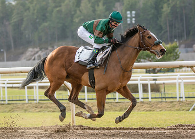 Weald vinner med Dayverson De Barros | Täby 140223 | Foto: Elina Björklund / Svensk Galopp