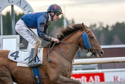 Little Warrior vinner med Jacob Johansen | Täby 140223 | Foto: Elina Björklund / Svensk Galopp