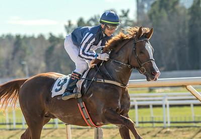 Mahany De Piboul vinner under Martin Rodriguez | Täby 140416 | Foto: Elina Björklund / Svensk Galopp