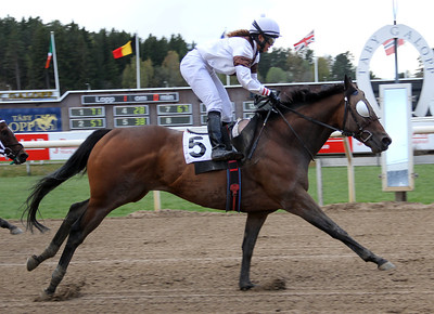 Mr David vinner med Aase Marie Brown | Täby 140504 | Foto: Klara Röstlund / Svensk Galopp