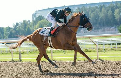 Avestruz vinner med Fabienne De Geer | Täby 140903 | Foto: Elina Björklund / Svensk Galopp