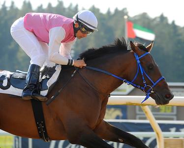 Sartejano vinner med Rafael De Oliveira   Täby 140914   Foto: Stefan Olsson / Svensk Galopp