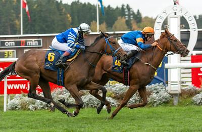 Red Glory och Elione Chaves vinner före Macrina | Täby 141012 | Foto: Elina Björklund / Svensk Galopp