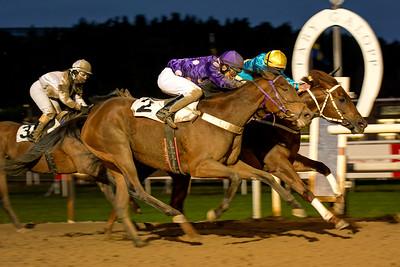 The Wicked Lord och Luis Santos vinner knapp före Miss Avonbridge | Täby 141116 | Foto: Elina Björklund / Svensk Galopp
