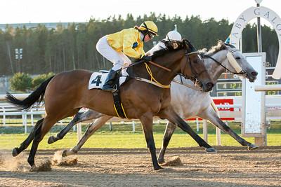 Capaill Liath och Rebecca Colldin vinner före Castillo | Täby 141221 | Foto: Elina Björklund / Svensk Galopp