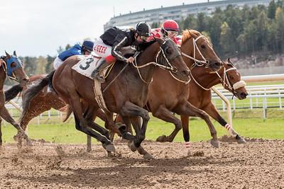 Thomahawkie och Fabienne De Geer (närmast) vinner knappt före Runforward och Royal Purse | Täby 150429 | Foto: Elina Björklund / Svensk Galopp