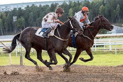 Sugar Ray och Rebecca Colldin vinner knappt före Greenday  | Täby 151007 | Foto: Elina Björklund / Svensk Galopp