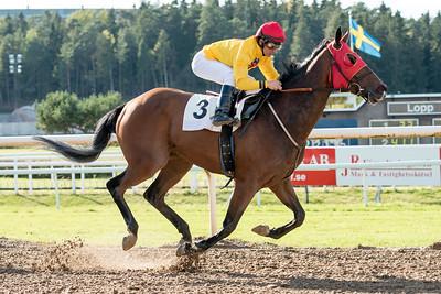 Rosehill vinner med Rafael De Oliveira | Täby 151007 | Foto: Elina Björklund / Svensk Galopp