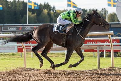 Fajry vinner med Per-Anders Gråberg | Täby 151007 | Foto: Elina Björklund / Svensk Galopp