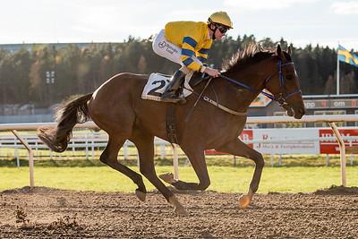 Tam O'Final vinner med Jacob Johansen | Täby 151028 | Foto: Elina Björklund / Svensk Galopp
