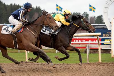 Muspelheim och Fanny Olsson vinner före Silence is Bliss | Täby 151125 | Foto: Elina Björklund / Svensk Galopp