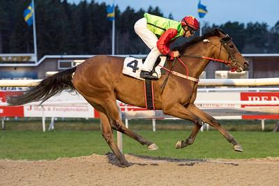 Ede's Piraya vinner med Elione Chaves | Täby 151206 | Foto: Elina Björklund / Svensk Galopp