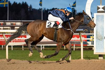 Turn The Page vinner med Andreas Tapia Dalbark | Täby 151206 | Foto: Elina Björklund / Svensk Galopp