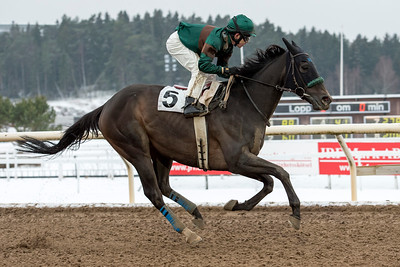 Great Soprano vinner övertygande under Shane Karlsson   Täby 160124   Foto: Elina Björklund / Svensk Galopp