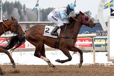 Ascot Hill vinner med Malin Holmberg | Täby 160214 | Foto: Elina Björklund / Svensk Galopp
