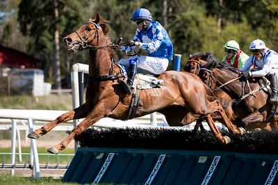 Luris Pegasus och Christopher Roberts hoppar sista häcken före Darjeeling och Fantastic Life | Täby 160505 | Foto: Elina Björklund / Svensk Galopp
