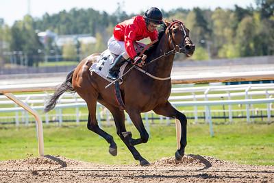 Siam vinner med Dayverson De Barros | Täby 160505 | Foto: Elina Björklund / Svensk Galopp