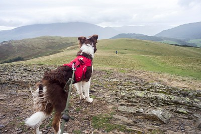 Fri 7th Sep : Sale Fell : Katie On Summit