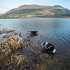 Wed 28th Dec : A Paddle In Bassenthwaite Lake