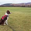 Fri 24th Feb : Katie At Castlerigg Stone Circle